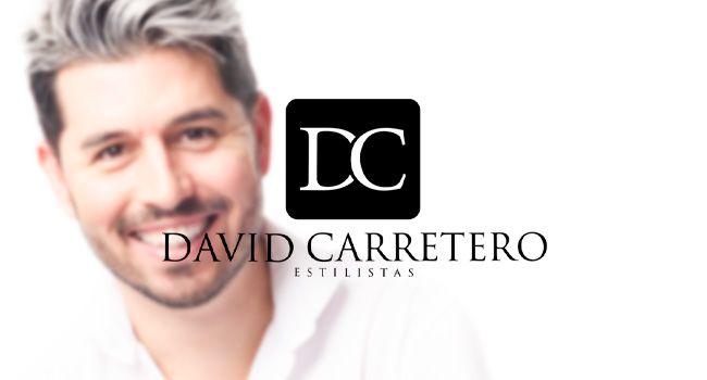 Diseño logo profesional Mallorca - David Carretero Estilistas