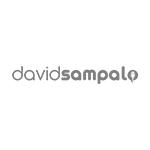 logo_davidsampalo