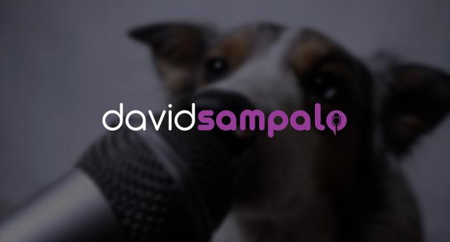 Diseño logo profesional Mallorca - David Sampalo